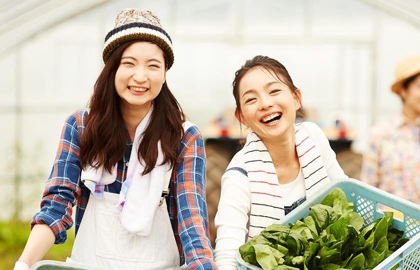 安心・安全な農作物を埼玉から全国へ届けたい。